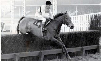 Pat Taffe on wonder horse Arkle